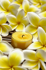 candles and frangipani flower on bamboo mat