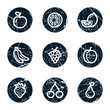 Fruits web icons, grunge circle buttons