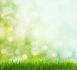 spring background - 39816267