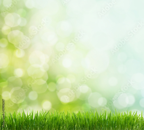 Leinwandbild Motiv spring background