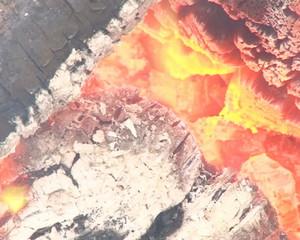 Closeup tree branch burn fireplace coal ember cinder fire smoke