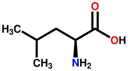 Essential amino acid leucine structural formula