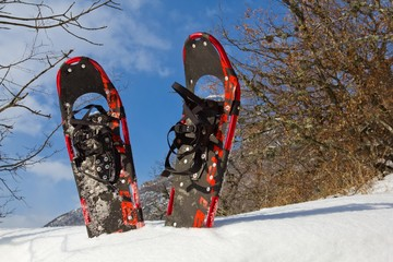 pair of snowshoe in a snow