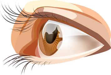 Eyes, a variant 3
