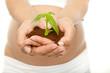 schwangere mit pflanze
