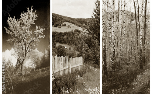Obraz old traditional photography - Rural views, triptych