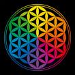 Rainbow Flower of Life - Blume des Lebens