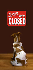 Sorry We Are Closed Reads the Dog.
