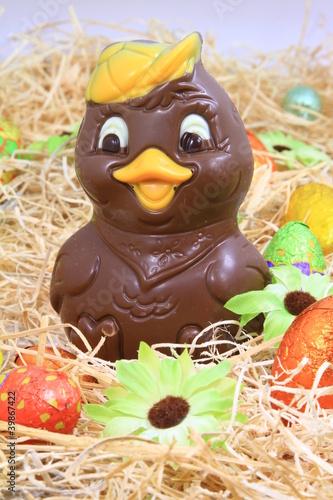 Poster canard en chocolat
