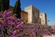 Castle, Palace of Alhambra, Granada © Arena Photo UK