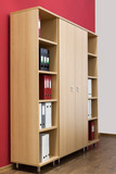 bookcase with folders