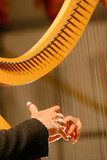 A woman playing harp during a concert.