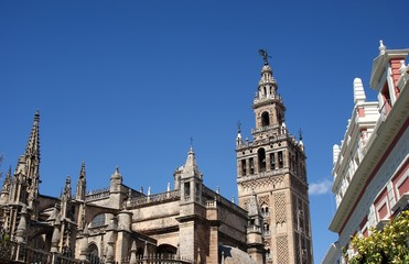 Lateral facade of the Cathedral of Seville