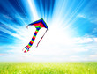 summery kite flying