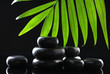 Spa stones and green palm leaf on black background