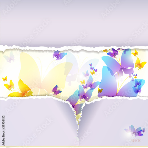Fototapeta Colorful butterfly background. Torn paper