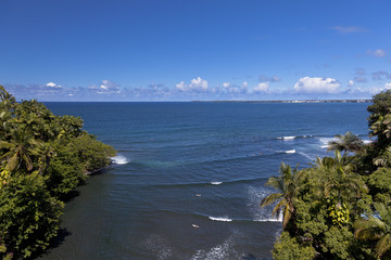 Surfers enjoying waves in a bay in Hilo, Hawaii