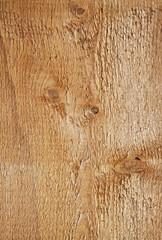 Holzbrett Buche Textur
