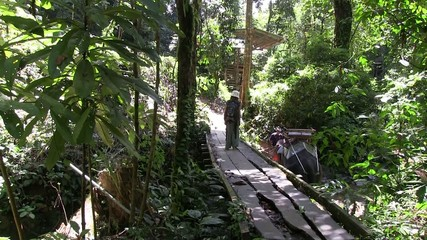 trekking ans la jungle thailande