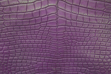 Purple Vintage crocodile skin texture.