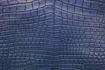 Blue Vintage crocodile skin texture.
