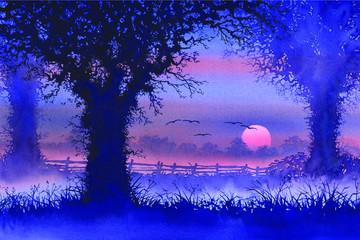 Misty moody tree sunset