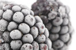 Frozen Blackberries Macro