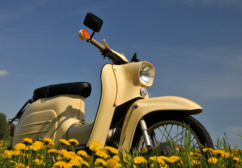 Moped im Frühling