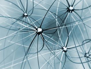 Brain cells neurons