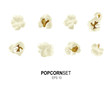 Vector popcorn set - 39948450