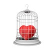 Locked in the cage of heart