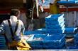 Leinwanddruck Bild - Arrivée de pêche