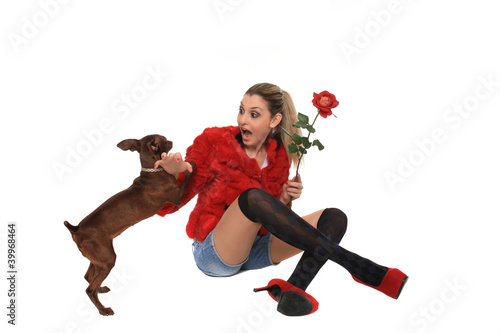 beautiful girl playing with a dog