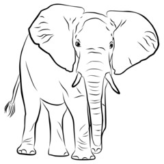 elephant silhouette - freehand, vector illustration