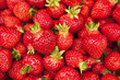 Farm Fresh Strawberries