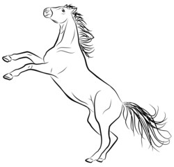 horse sketch on a white background, vector illustration