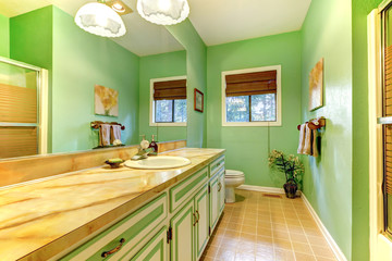 Green outdated bathroom interior.