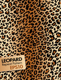 Leopard Skin Repeat pattern