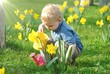 Child watering plants in sunshine