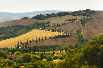 Famous winding road in Val d'Orcia