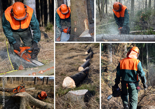 Woodcutter, forest work set
