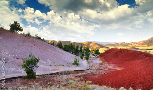 A View from the Painted Hills