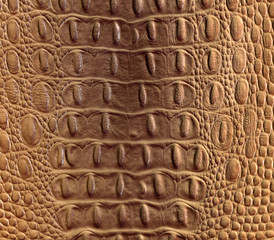 clever fake crocodile leather background