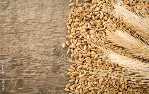 wheat grain and ear on wood