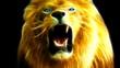 Lion Roars - Fractal Rendering HD