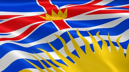 British Columbian flag in the wind