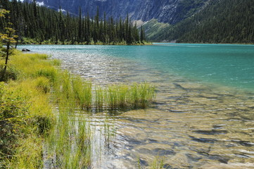 Cavell Lake in Jasper National Park, Canada