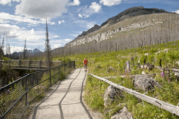Hiker on a Marble Canyon Trail in Kootenay National Park, Canada