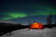 Wintertour in Lappland - Nachts unter Nordlichtern