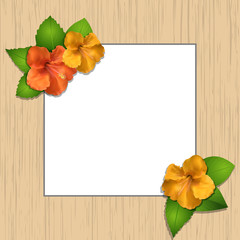 hibiscus flowers and wooden frame